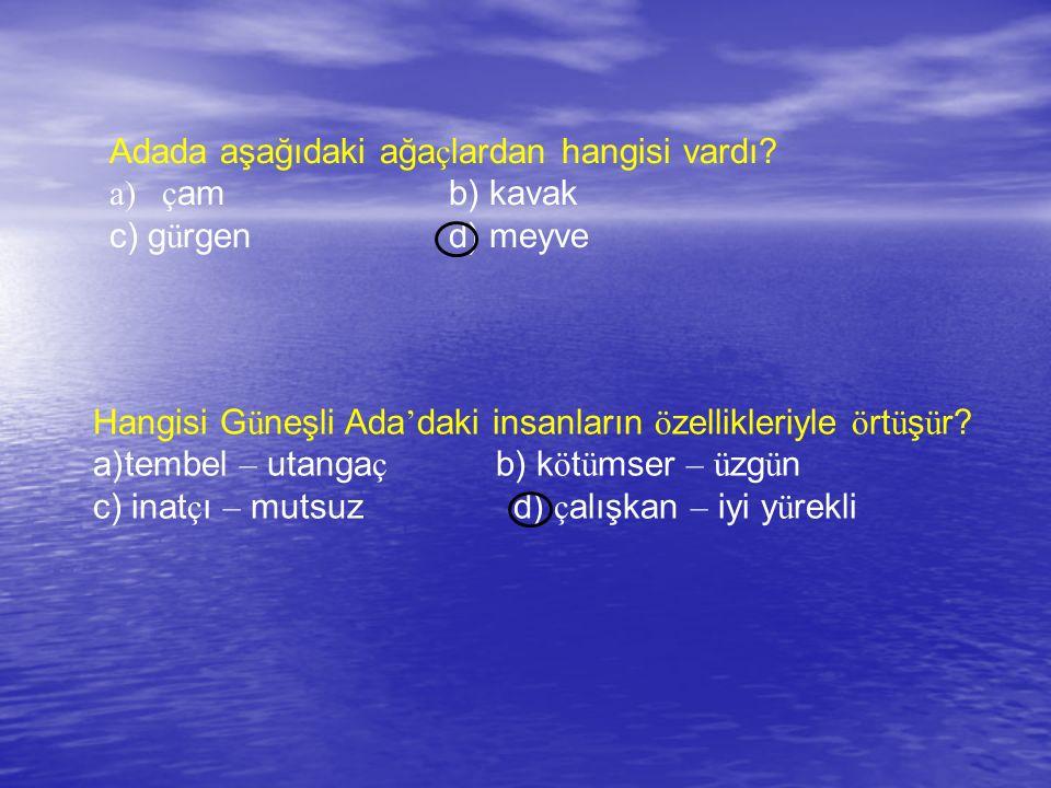 Adada aşağıdaki ağa ç lardan hangisi vardı? a)ç am b) kavak c) g ü rgen d) meyve Hangisi G ü neşli Ada ' daki insanların ö zellikleriyle ö rt ü ş ü r?