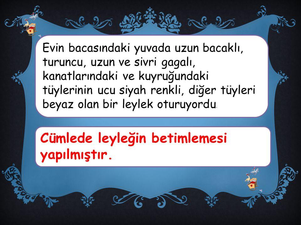Oyunların lideri Çetin'dir.