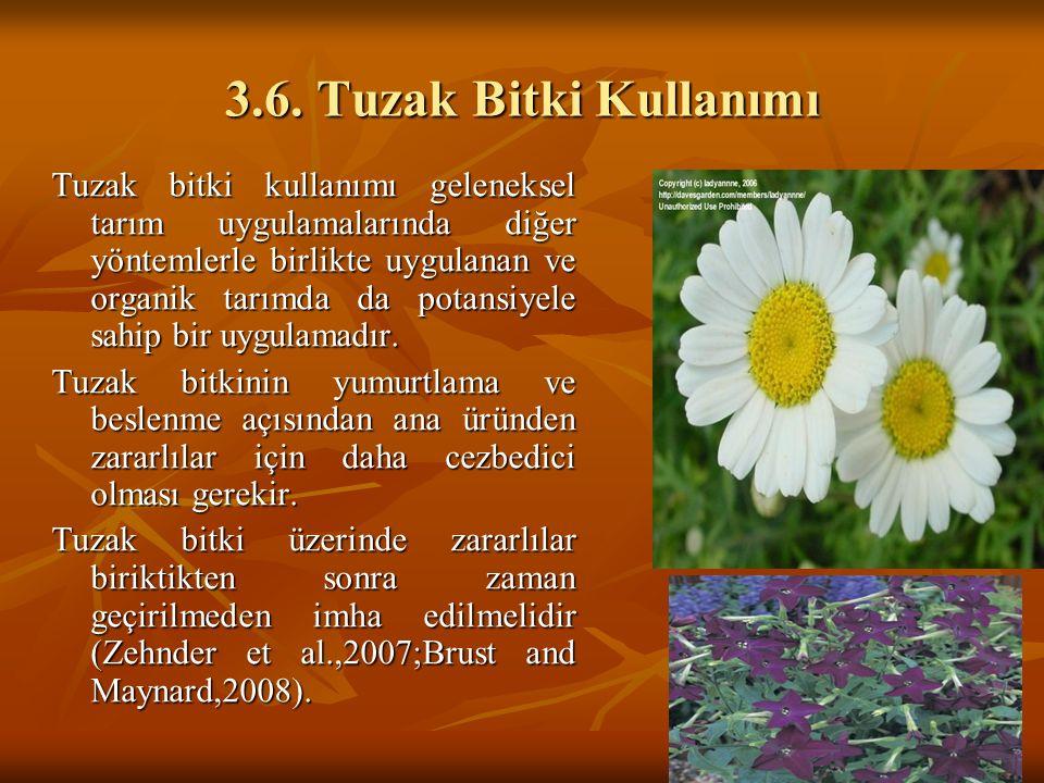 3.6. Tuzak Bitki Kullanımı Tuzak bitki kullanımı geleneksel tarım uygulamalarında diğer yöntemlerle birlikte uygulanan ve organik tarımda da potansiye