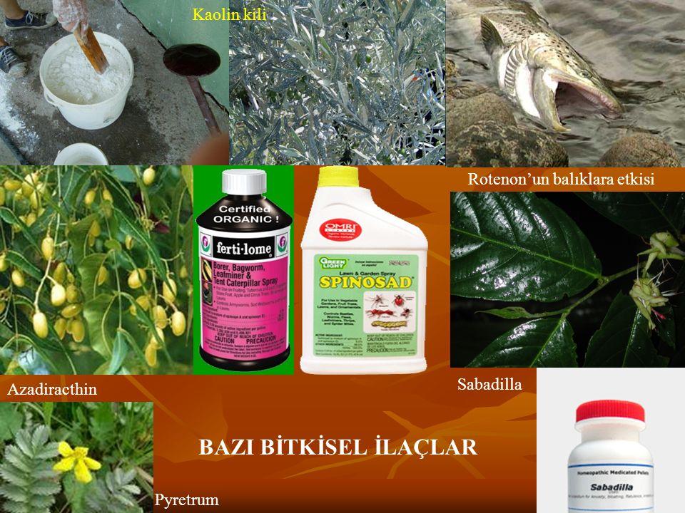 Rotenon'un balıklara etkisi Kaolin kili Azadiracthin Pyretrum Sabadilla BAZI BİTKİSEL İLAÇLAR