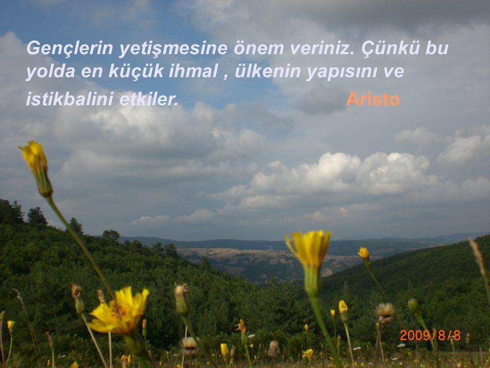 Daha sonra Mustafa Kemal Meclis-i Mebusan' ın çalışmalarını daha yakından takip edebilmek için Ankara'ya gelmiştir.