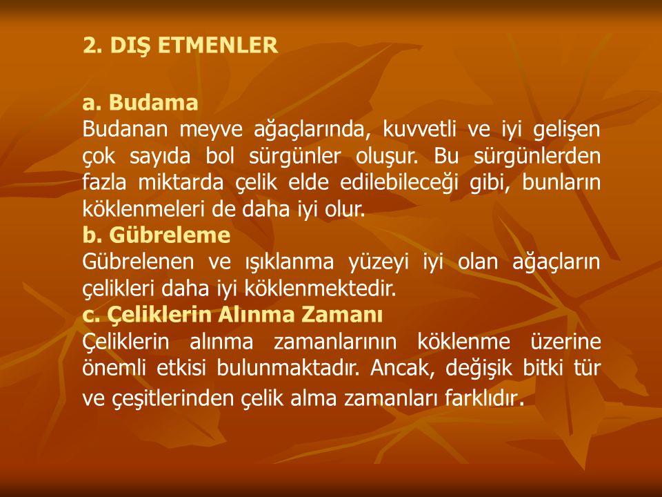 2.DIŞ ETMENLER a.