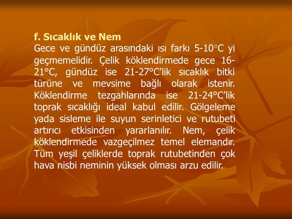 f. Sıcaklık ve Nem Gece ve gündüz arasındaki ısı farkı 5-10°C yi geçmemelidir. Çelik köklendirmede gece 16- 21°C, gündüz ise 21-27°C'lik sıcaklık bitk