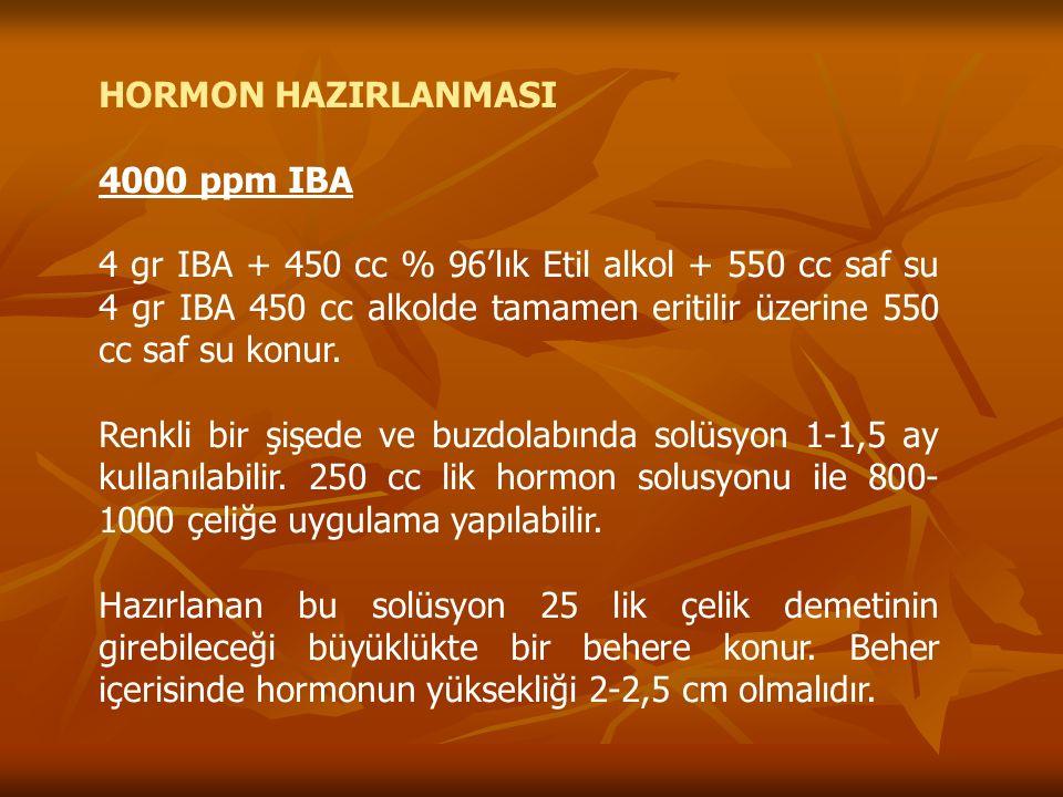 HORMON HAZIRLANMASI 4000 ppm IBA 4 gr IBA + 450 cc % 96'lık Etil alkol + 550 cc saf su 4 gr IBA 450 cc alkolde tamamen eritilir üzerine 550 cc saf su konur.