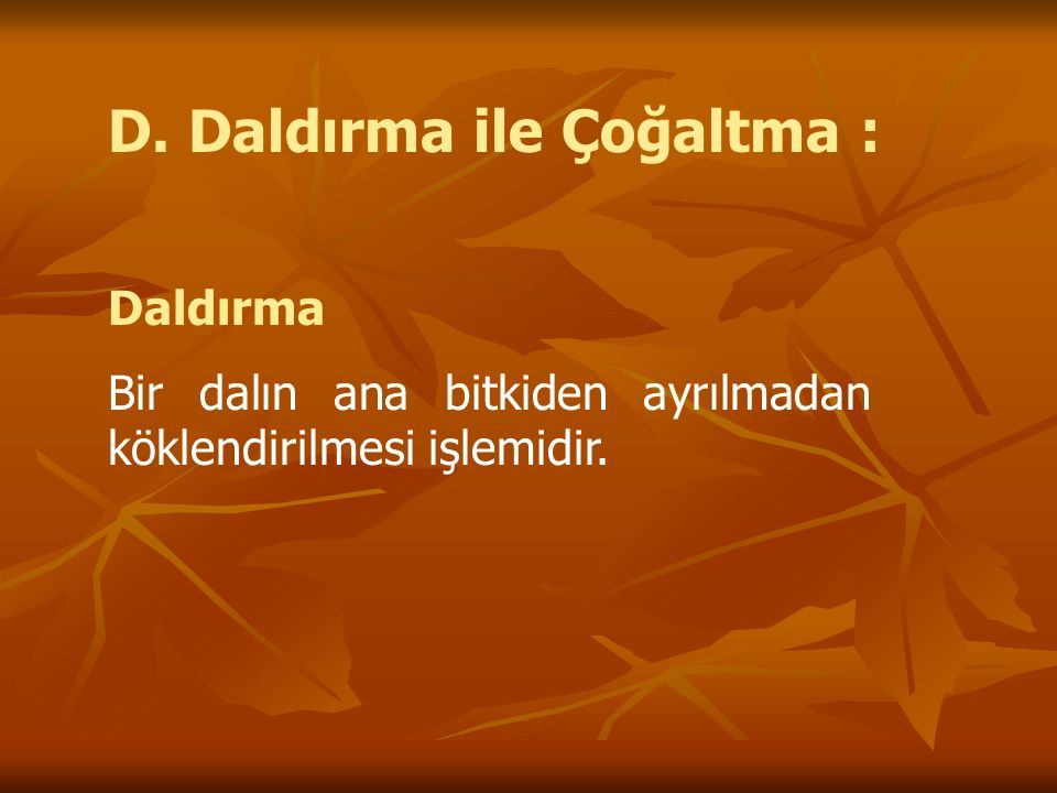 D. Daldırma ile Çoğaltma : Daldırma Bir dalın ana bitkiden ayrılmadan köklendirilmesi işlemidir.