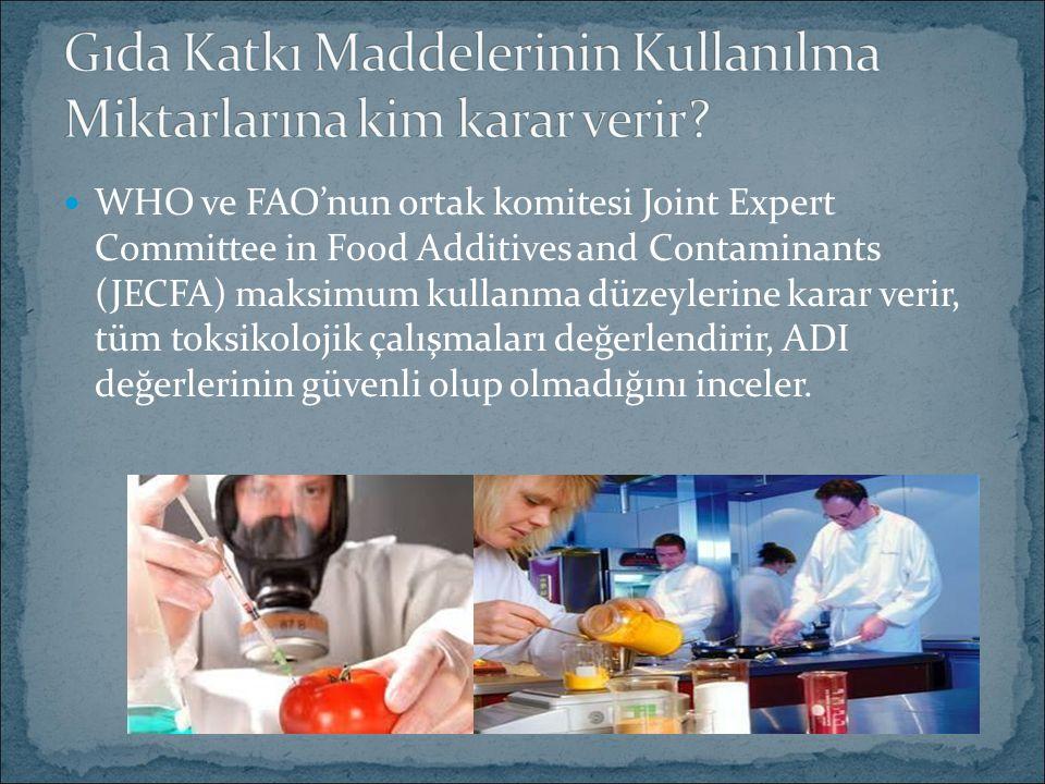 WHO ve FAO'nun ortak komitesi Joint Expert Committee in Food Additives and Contaminants (JECFA) maksimum kullanma düzeylerine karar verir, tüm toksiko