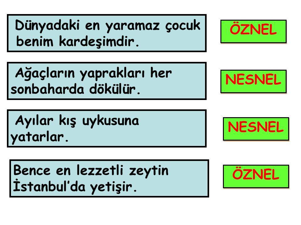 En güçlü takım Beşiktaş'tır.En güzel böreği Burcu'nun annesi yapar.