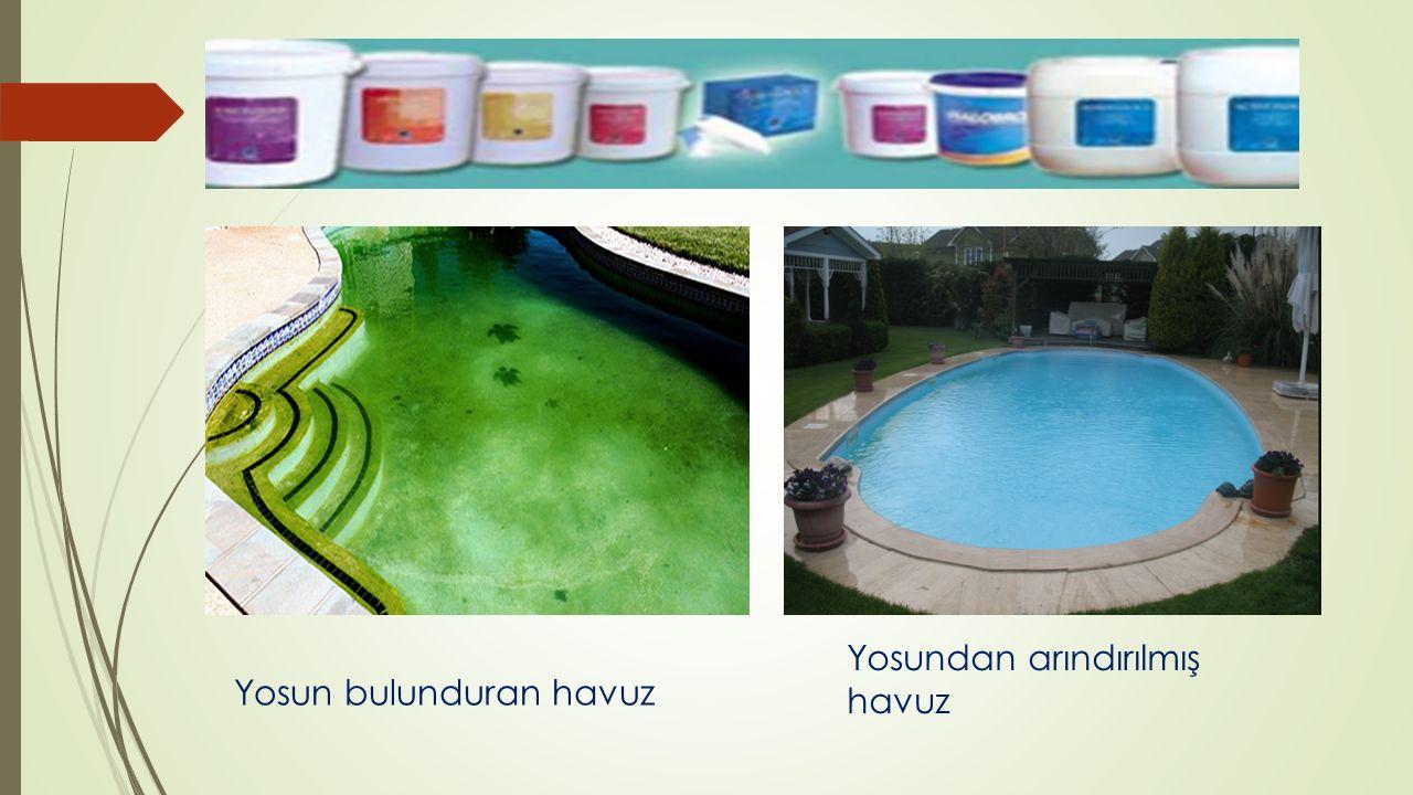 Yosun bulunduran havuz Yosundan arındırılmış havuz