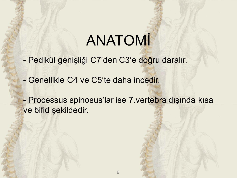 6 - Pedikül genişliği C7'den C3'e doğru daralır. - Genellikle C4 ve C5'te daha incedir. - Processus spinosus'lar ise 7.vertebra dışında kısa ve bifid