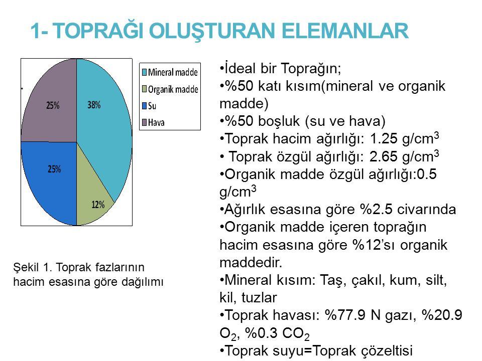 1- TOPRAĞI OLUŞTURAN ELEMANLAR. İdeal bir Toprağın; %50 katı kısım(mineral ve organik madde) %50 boşluk (su ve hava) Toprak hacim ağırlığı: 1.25 g/cm