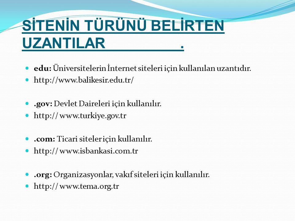edu: Üniversitelerin İnternet siteleri için kullanılan uzantıdır. http://www.balikesir.edu.tr/.gov: Devlet Daireleri için kullanılır. http:// www.turk
