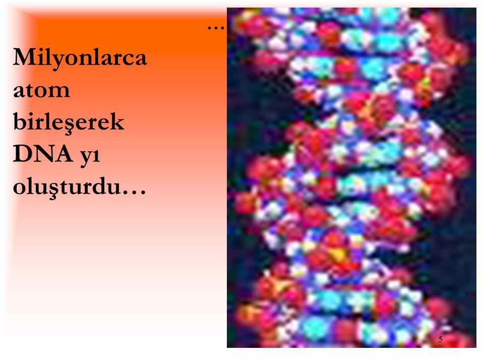 .... 5 Milyonlarca atom birleşerek DNA yı oluşturdu…