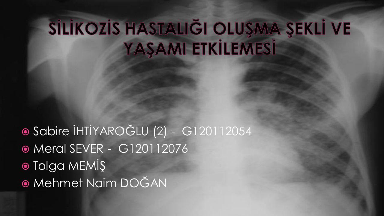  Sabire İHTİYAROĞLU (2) - G120112054  Meral SEVER - G120112076  Tolga MEMİŞ  Mehmet Naim DOĞAN
