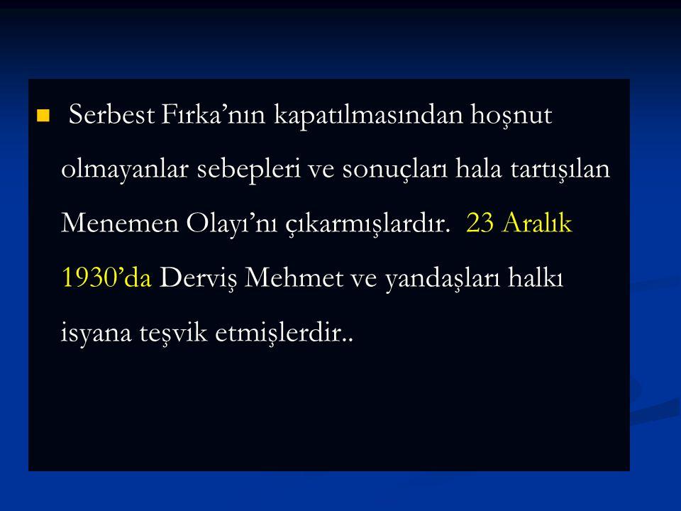 1930 yılı İlkbaharında yaptığı yurt gezisinde hükümete karşı şikayet- leri de dikkate alan Mustafa Kemal yeni bir siyasi oluşuma karar verdi.