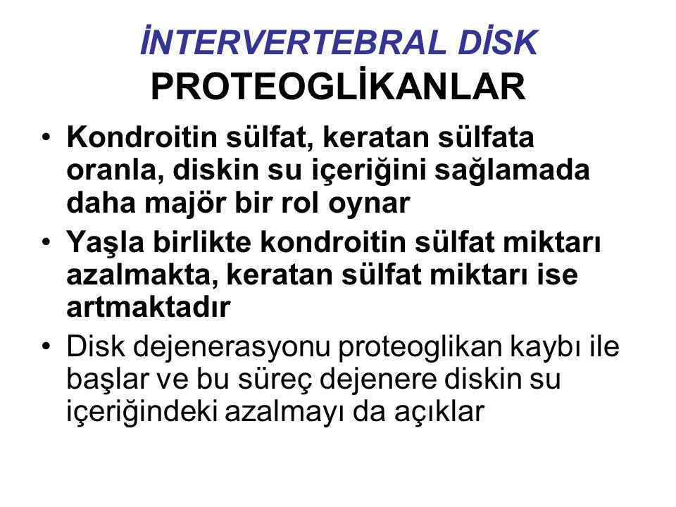 İNTERVERTEBRAL DİSK PROTEOGLİKANLAR Kondroitin sülfat, keratan sülfata oranla, diskin su içeriğini sağlamada daha majör bir rol oynar Yaşla birlikte kondroitin sülfat miktarı azalmakta, keratan sülfat miktarı ise artmaktadır Disk dejenerasyonu proteoglikan kaybı ile başlar ve bu süreç dejenere diskin su içeriğindeki azalmayı da açıklar