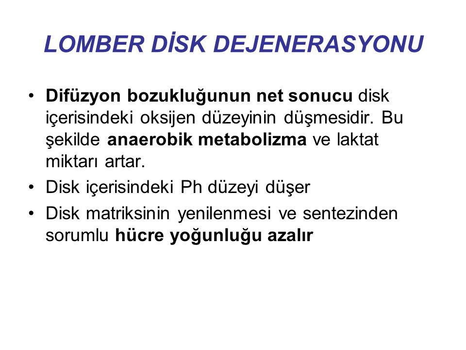LOMBER DİSK DEJENERASYONU Difüzyon bozukluğunun net sonucu disk içerisindeki oksijen düzeyinin düşmesidir.