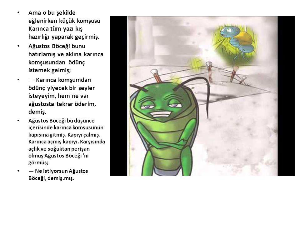 Ama o bu şekilde eğlenirken küçük komşusu Karınca tüm yazı kış hazırlığı yaparak geçirmiş. Ağustos Böceği bunu hatırlamış ve aklına karınca komşusunda