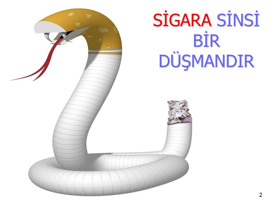 SİGARA SİNSİ BİR DÜŞMANDIR 2