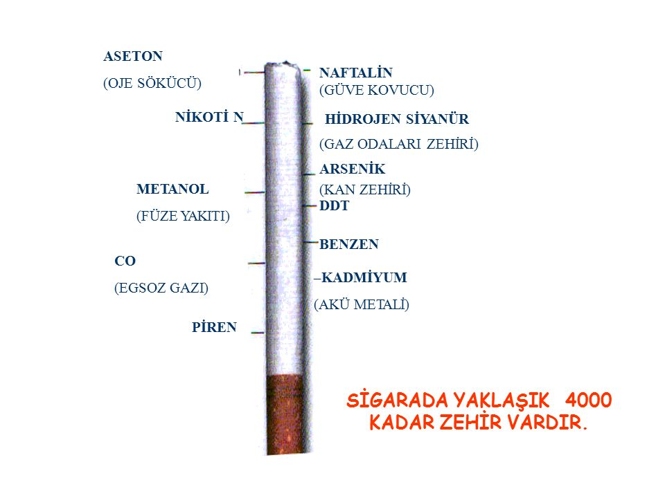 ASETON (OJE SÖKÜCÜ) NİKOTİ N METANOL (FÜZE YAKITI) CO (EGSOZ GAZI) PİREN NAFTALİN (GÜVE KOVUCU) HİDROJEN SİYANÜR (GAZ ODALARI ZEHİRİ) ARSENİK (KAN ZEHİRİ) DDT BENZEN SİGARADA YAKLAŞIK4000 KADAR ZEHİR VARDIR.