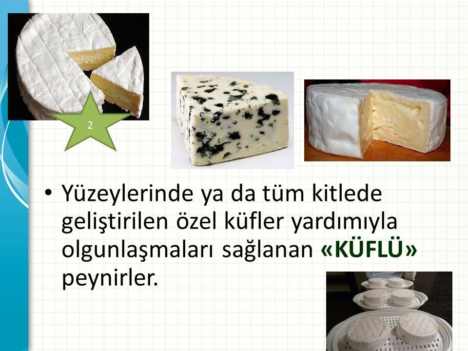Yüzeylerinde ya da tüm kitlede geliştirilen özel küfler yardımıyla olgunlaşmaları sağlanan «KÜFLÜ» peynirler. 2
