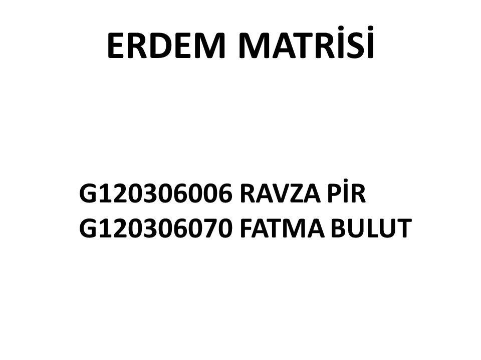 ERDEM MATRİSİ G120306006 RAVZA PİR G120306070 FATMA BULUT