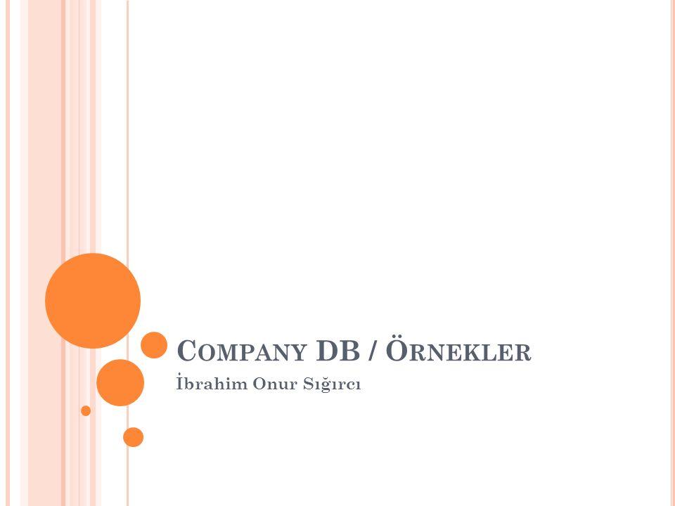 C OMPANY DB / Ö RNEKLER İbrahim Onur Sığırcı