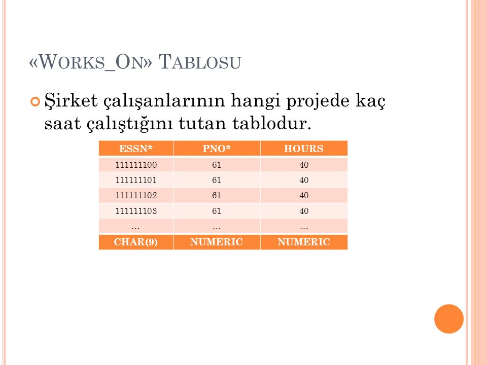 «W ORKS _O N » T ABLOSU ESSN*PNO*HOURS 1111111006140 1111111016140 1111111026140 1111111036140 ……… CHAR(9)NUMERIC Şirket çalışanlarının hangi projede kaç saat çalıştığını tutan tablodur.