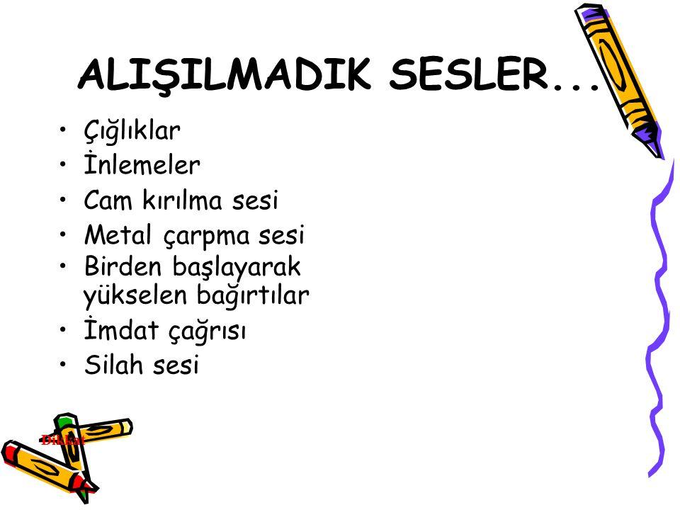 ALIŞILMADIK SESLER...