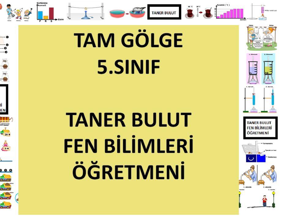 TAM GÖLGE 5.SINIF TANER BULUT