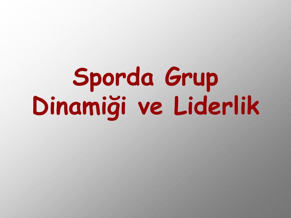 Üyelerin nitelikleri Grup ortamı Grup yapısı Grup bağlılığı Grup süreçleri Grup verimi Bireysel verim