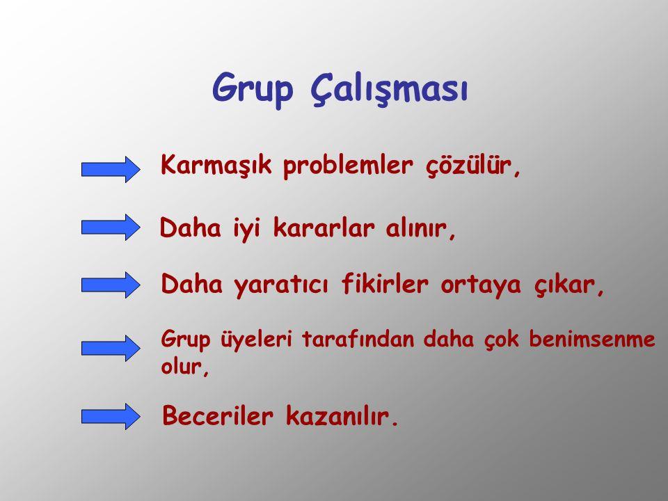 - İletişim ve katılım, - Karar verme şekli, - Liderlik, - Amaçlar ve roller, - Grup kuralları, - Problem çözme şekli, -Grubun havası ve ses tonları.