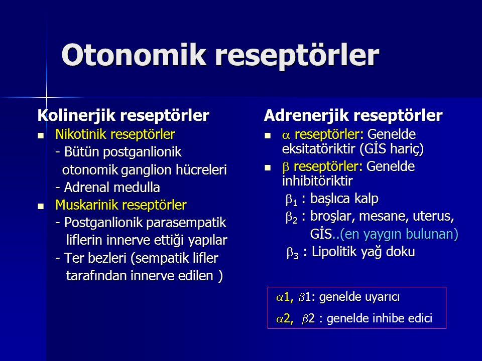 Otonomik reseptörler Kolinerjik reseptörler Nikotinik reseptörler Nikotinik reseptörler - Bütün postganlionik otonomik ganglion hücreleri otonomik gan
