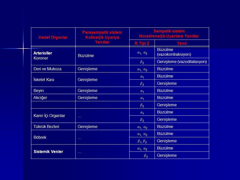 Hedef Organlar Parasempatik sistem Kolinerjik Uyarıya Yanıtlar Sempatik sistem Noradrenerjik Uyarılara Yanıtlar R.Tipi 2Yanıt Arterioller Koroner Büzü