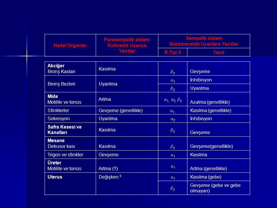 Akciğer Bronş Kasları Kasılma 22 Gevşeme Bronş BezleriUyarılma 11 İnhibisyon 22 Uyarılma Mide Motilite ve tonüs Artma  1,  2,  2 Azalma (gene