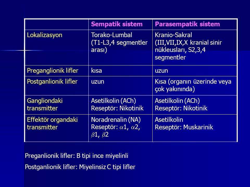 Sempatik sistemParasempatik sistem LokalizasyonTorako-Lumbal (T1-L3,4 segmentler arası) Kranio-Sakral (III,VII,IX,X kranial sinir nükleusları, S2,3,4