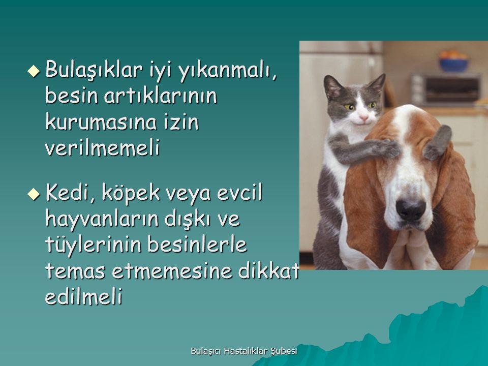 Bulaşıcı Hastalıklar Şubesi  Bulaşıklar iyi yıkanmalı, besin artıklarının kurumasına izin verilmemeli  Kedi, köpek veya evcil hayvanların dışkı ve tüylerinin besinlerle temas etmemesine dikkat edilmeli