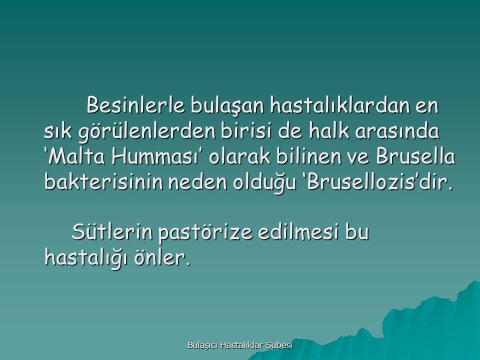 Bulaşıcı Hastalıklar Şubesi Besinlerle bulaşan hastalıklardan en sık görülenlerden birisi de halk arasında 'Malta Humması' olarak bilinen ve Brusella bakterisinin neden olduğu 'Brusellozis'dir.