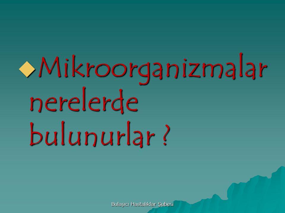  Mikroorganizmalar nerelerde bulunurlar ? Bulaşıcı Hastalıklar Şubesi
