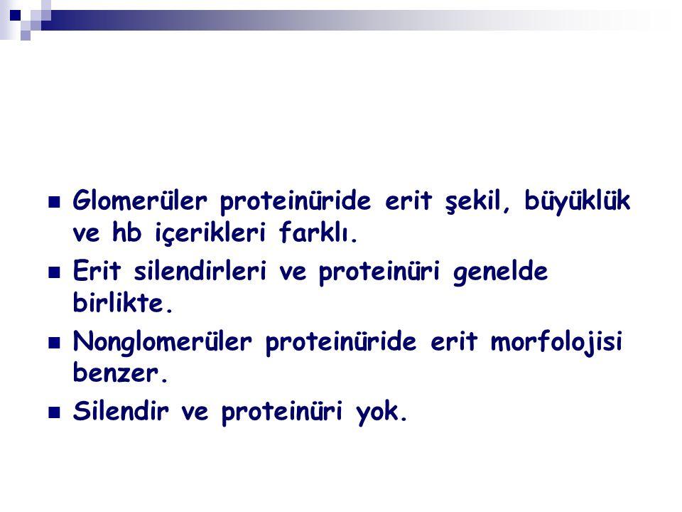 Glomerüler proteinüride erit şekil, büyüklük ve hb içerikleri farklı. Erit silendirleri ve proteinüri genelde birlikte. Nonglomerüler proteinüride eri
