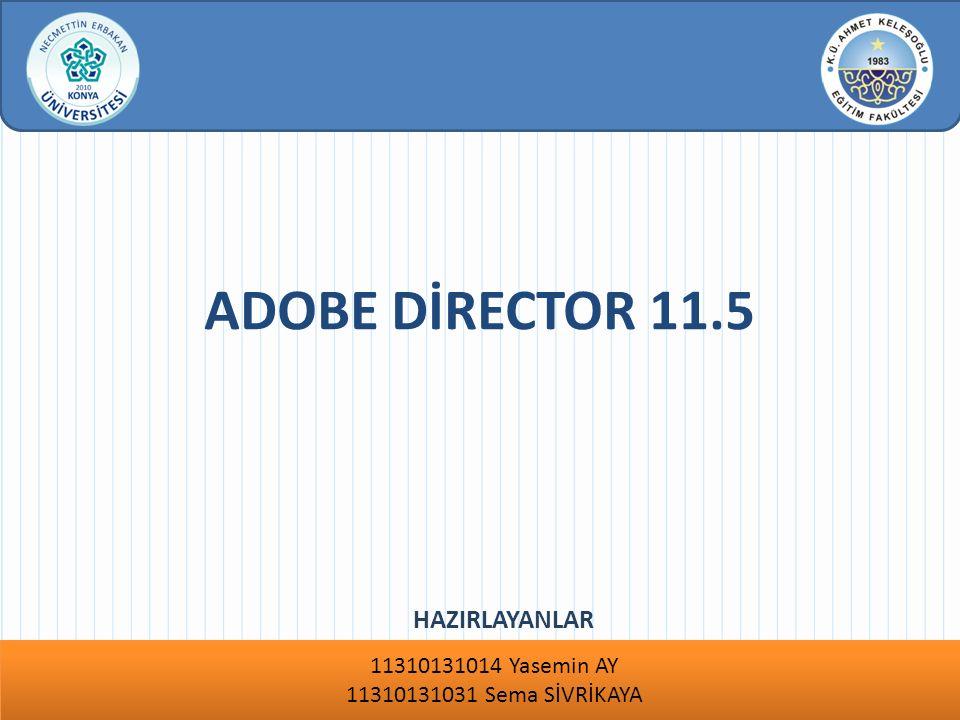 Özet : www.konyaegitim.org Adobe Director 11.5 masaüstü uygulamaları, DVD ve CD ler için zorlayıcı interaktif oyunlar, demolar, prototipler, simülasyonlar ve e-Öğrenim kursları hazırlamak için kullanılan bir programdır.
