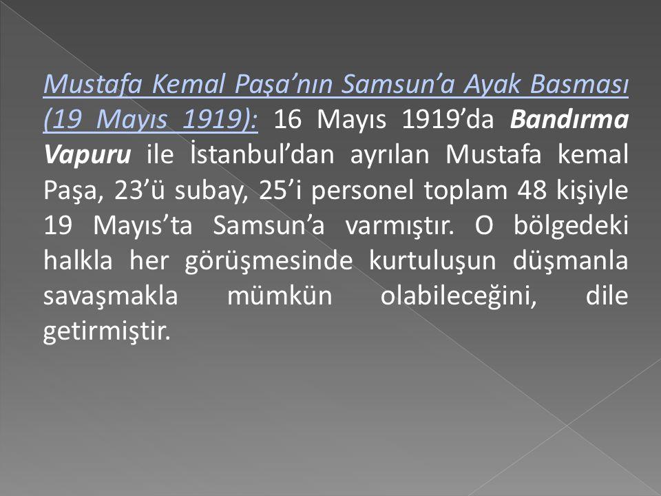 Bu isteklerden anlaşılacağı gibi hükümet, Mustafa Kemal Paşa'ya, kendilerini savunmaya başlayan Türkleri yatıştırma ve silahsızlandırma görevi vermişt