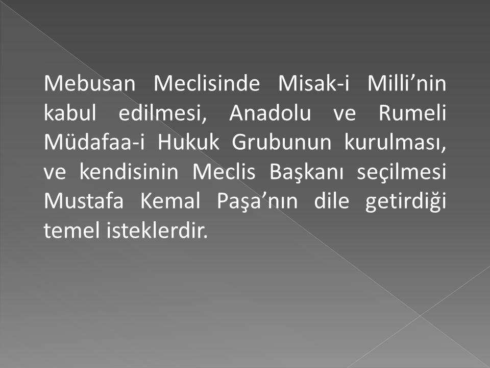 Bu görüşmede Erzurum ve Sivas Kongrelerinde şekillenen, bizzat kendisi tarafından kaleme alınan ve bağımsız bir Türk devletinin kuruluş prensipleri ol