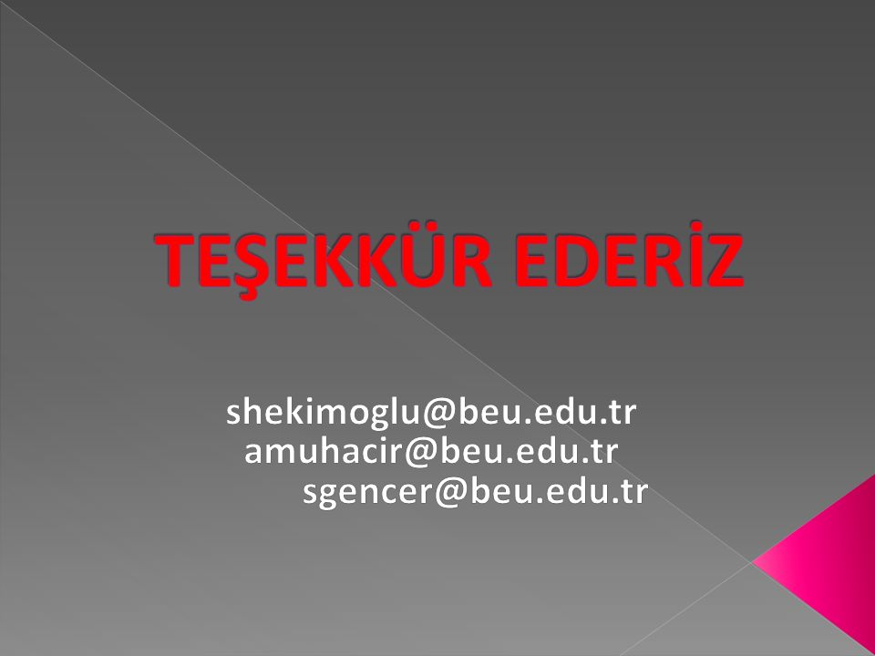 Temsil Heyeti'nin Ankara'ya Gelişi