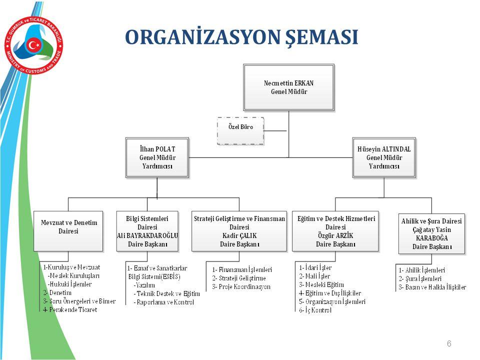 6 ORGANİZASYON ŞEMASI