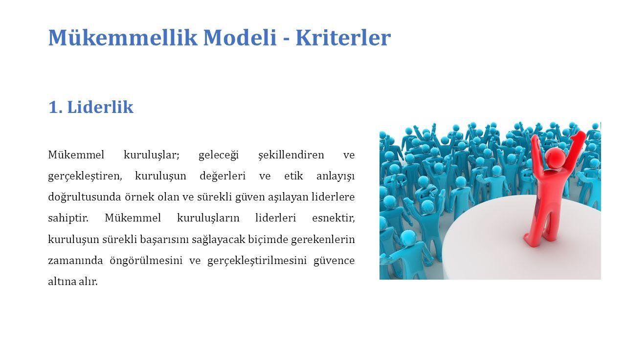 Mükemmellik Modeli - Kriterler 1.