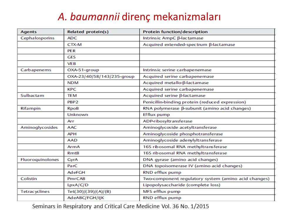 A. baumannii direnç mekanizmaları Seminars in Respiratory and Critical Care Medicine Vol. 36 No. 1/2015