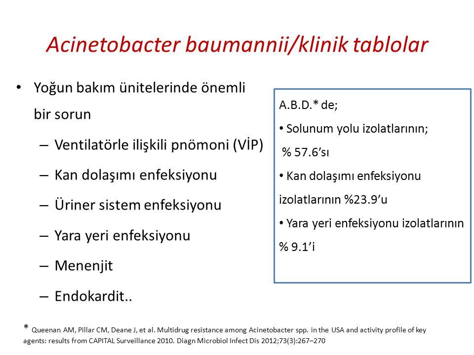 KOLİSTİN+ TMP/SMX