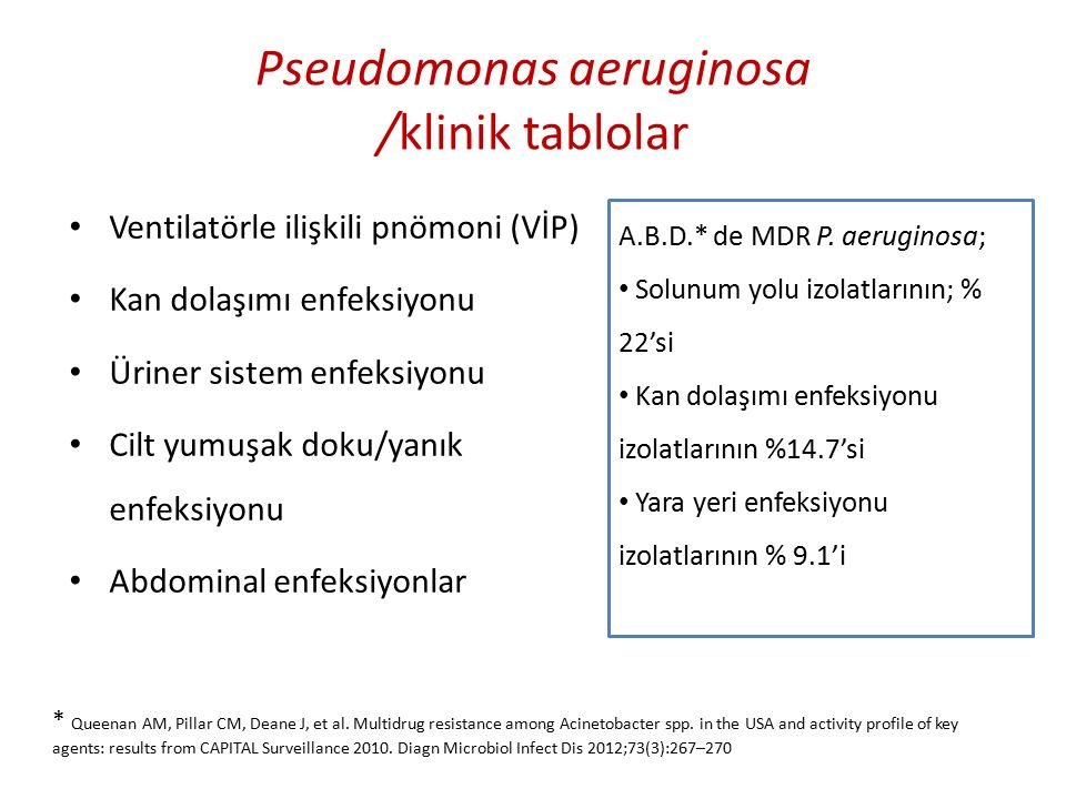 Pseudomonas aeruginosa /klinik tablolar Ventilatörle ilişkili pnömoni (VİP) Kan dolaşımı enfeksiyonu Üriner sistem enfeksiyonu Cilt yumuşak doku/yanık enfeksiyonu Abdominal enfeksiyonlar A.B.D.* de MDR P.