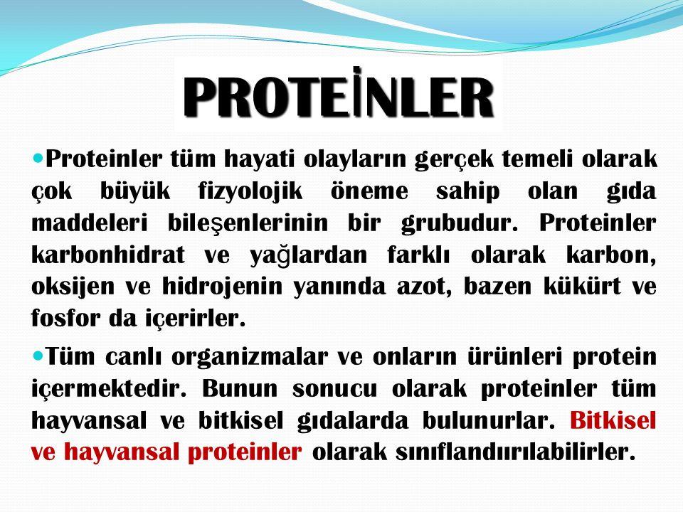 PROTE İ NLER Proteinler tüm hayati olayların gerçek temeli olarak çok büyük fizyolojik öneme sahip olan gıda maddeleri bile ş enlerinin bir grubudur.