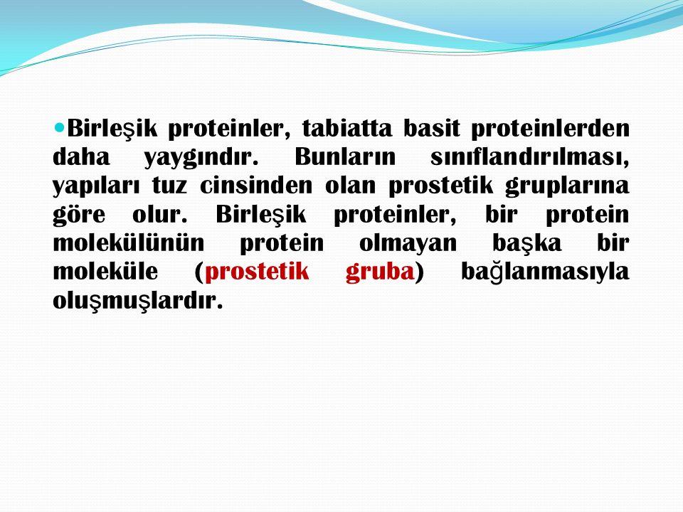 Basit proteinlerin yanında inorganik asitler, karbonhidratlar, renk maddeleri gibi yabancı madde içeren (prostetik grup) proteinler birle ş ik proteinlerdir.
